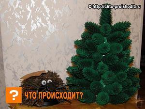 osobennosti_sozdaniya_elki Как сделать ёлку из шишек. Как сделать елку из еловых шишек своими руками